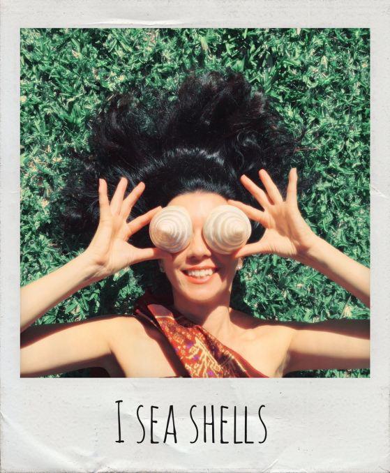 Alexandria Main I Sea Shells